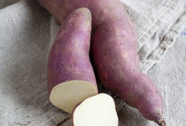 Ipomoea batatas Erato Pleno