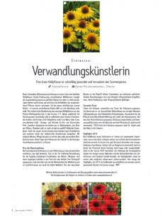 Gartenidee 02/2011