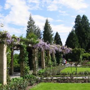 Botanischer Garten Insel Mainau