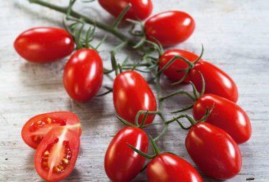 Pflaumencherry-Tomate Mirado Red F1