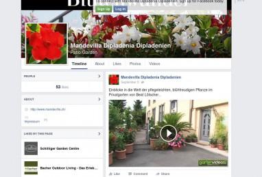 Social Media auf Facebook