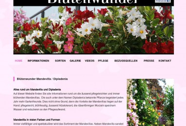 Produktewebsite www.mandevilla.ch