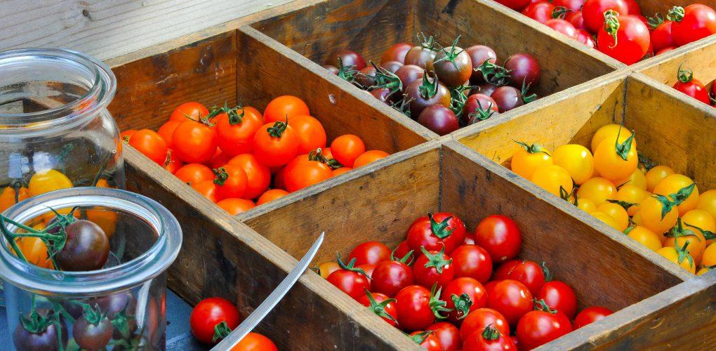 Snackgemüse für Geniesser