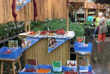 Gemüsedegustation in einer Gärtnerei