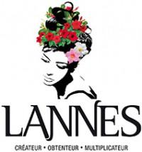 Logo S.A.S. Lannes & Fils