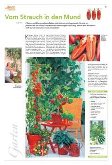 Bauen Wohnen Garten 04/2011
