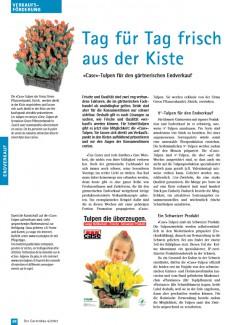 Gartenbau 6/2002