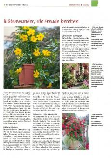 Gartenfreund 06/2012