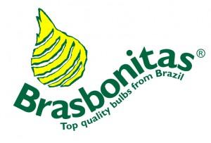 logo Brasbonitas