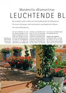 Schweizer Garten 03/2012