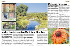 Tierwelt 03/2012