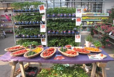Gemüsedegustation