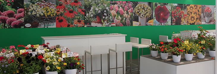 Über die GREEN Pflanzenhandel GmbH